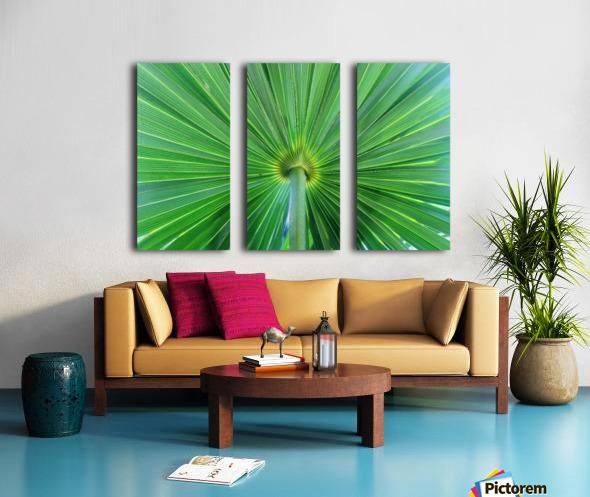 Leafy Green Split Canvas print