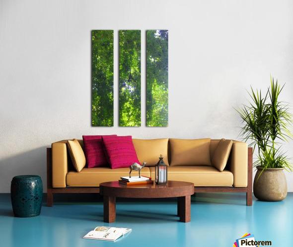 Just Hanging Around Split Canvas print