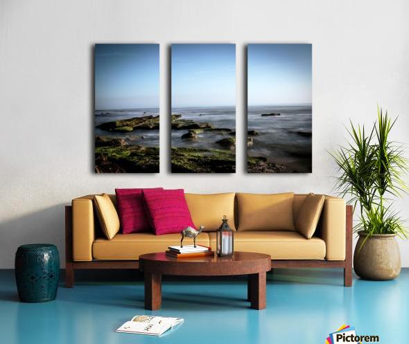 Turtle Island Split Canvas print
