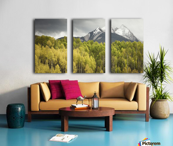 Kebler Pass  Split Canvas print