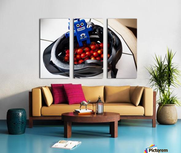 Robot Bike Helmet Tomatoes Split Canvas print
