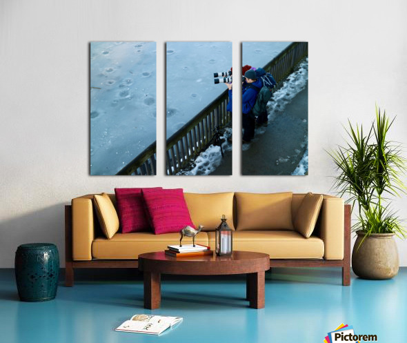 Photographers Split Canvas print