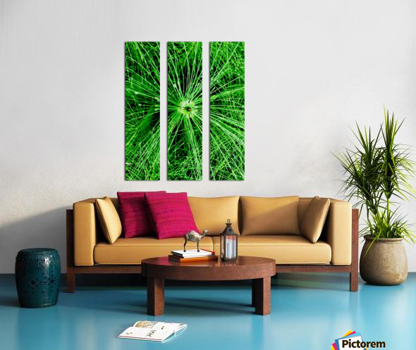 BOTANICA Split Canvas print