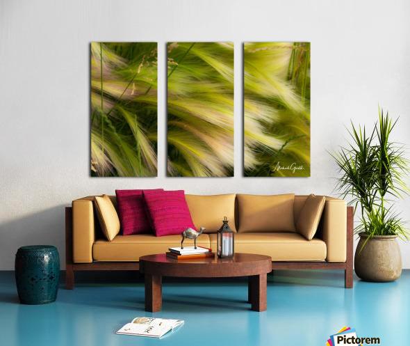 Grasses Of Summer Split Canvas print