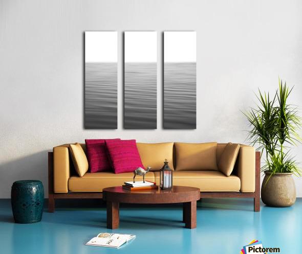 Simplicity Split Canvas print