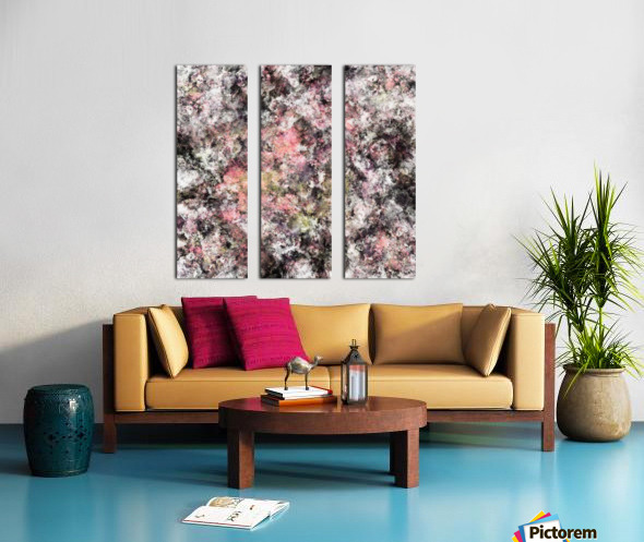 Coral Split Canvas print