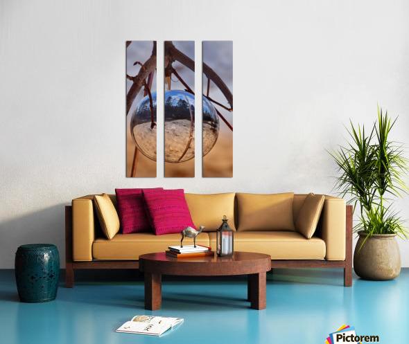 Capturer Split Canvas print