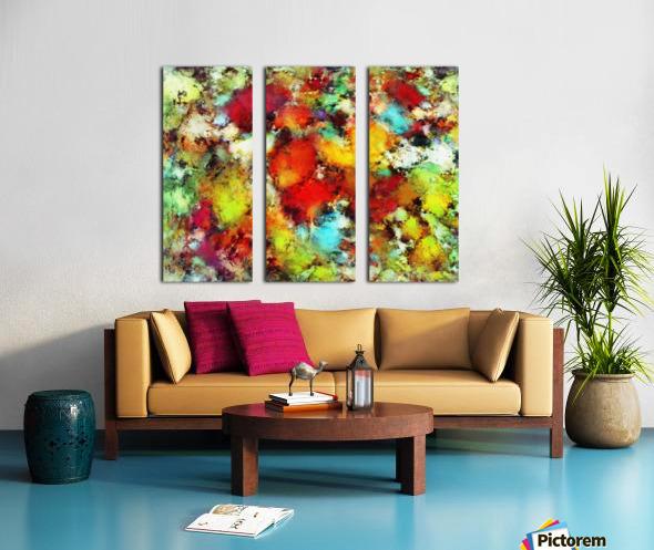 Expansion Split Canvas print