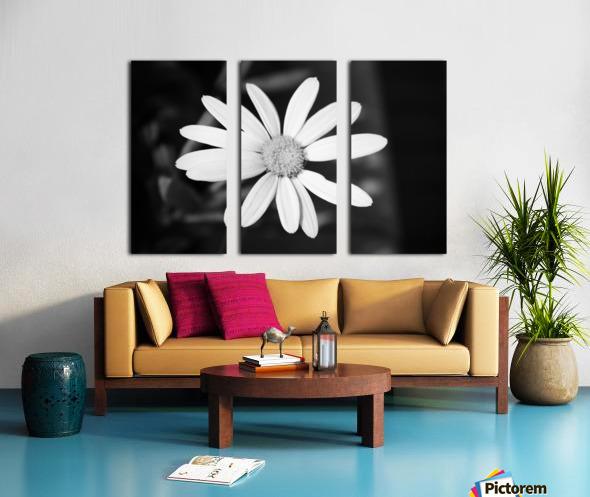 Beautifully White B&W Split Canvas print