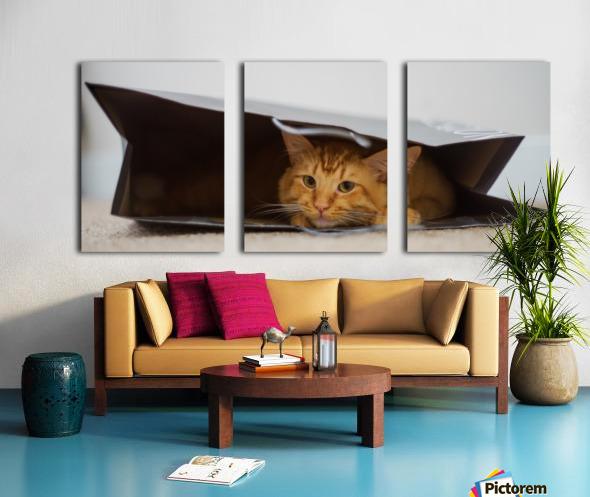 Cat In The Bag Toile Multi-Panneaux