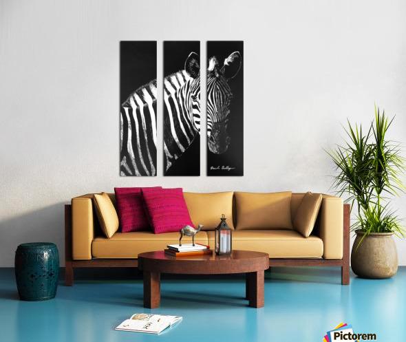 Zebra Portrait Split Canvas print