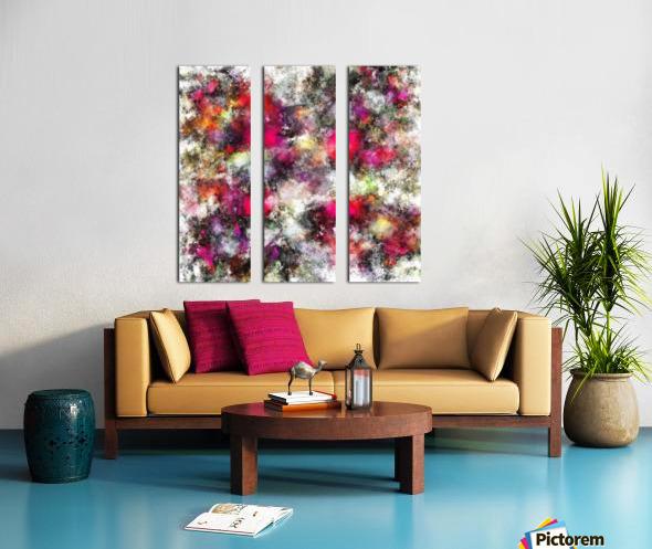 Spin Split Canvas print