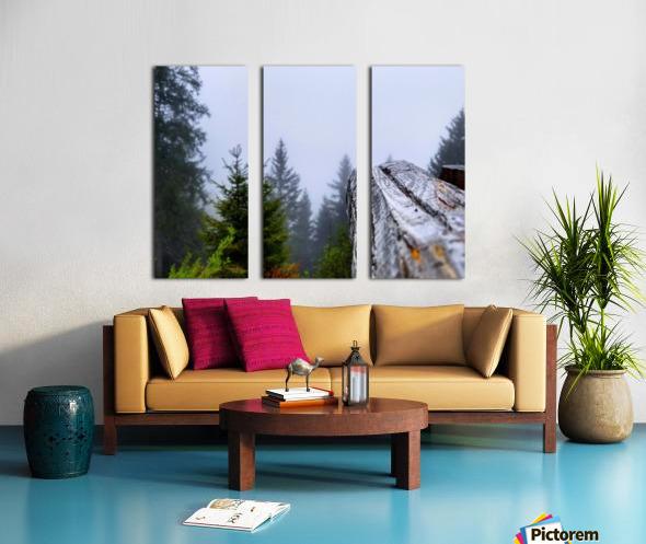 Mt Rigi Split Canvas print