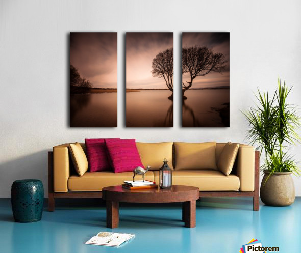 The Kenfig Tree Split Canvas print