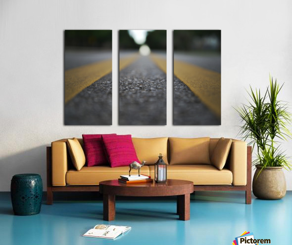 The Road Before You Split Canvas print