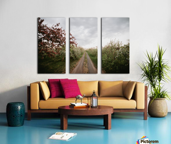 Chemin fleuri Toile Multi-Panneaux