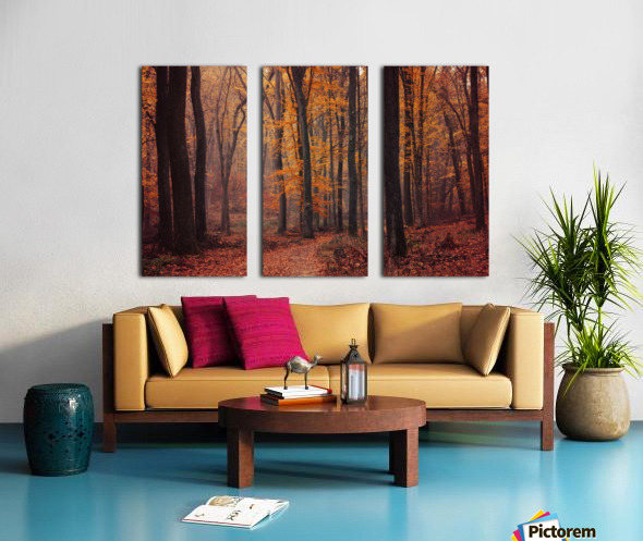 Fall Impressions VIII. Split Canvas print