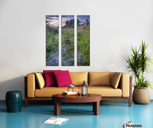 Sunset bunny Split Canvas print