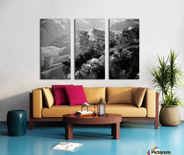 DSC_4863 Split Canvas print