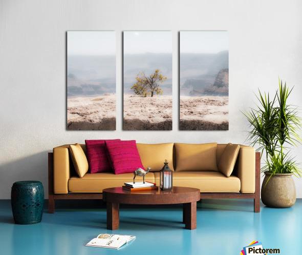 Desert Shrub Grand Canyon 2 Split Canvas print