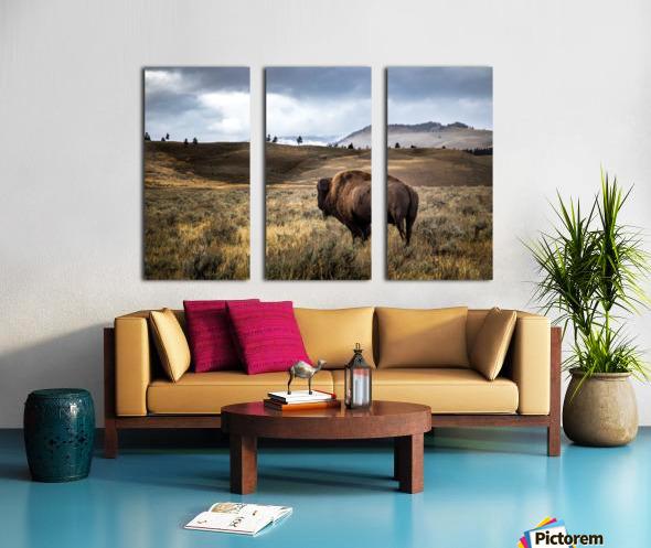 Stormy Bison Split Canvas print