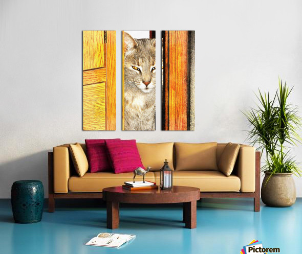 Looking From The Other Side Split Canvas print