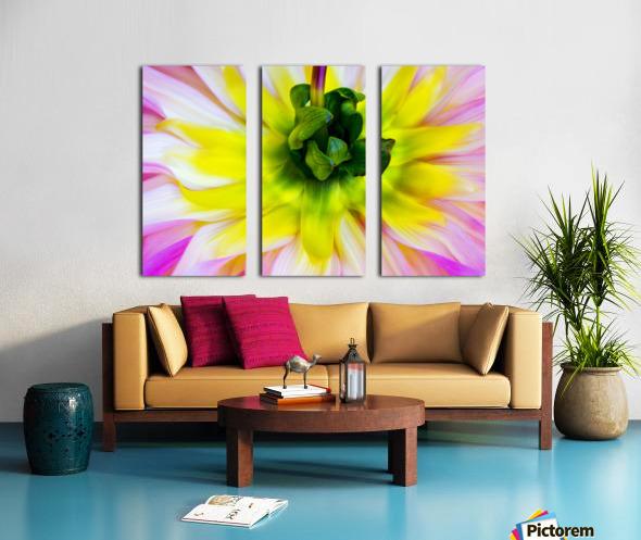 Pink Yellow Green  Split Canvas print