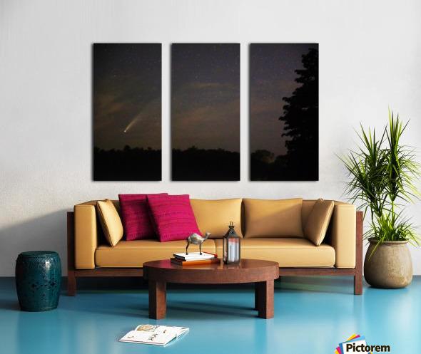 Neowise Comet 7.14.20 Split Canvas print