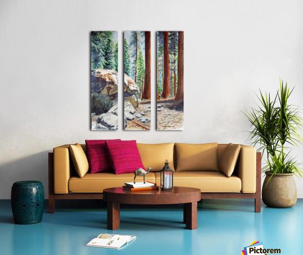 National Park Sequoia Split Canvas print