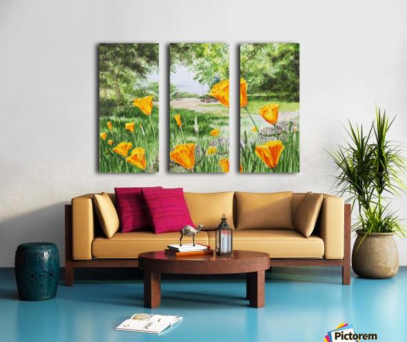 California Poppies Split Canvas print