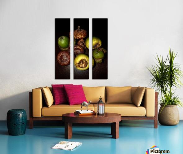 Acorn arrangement Split Canvas print