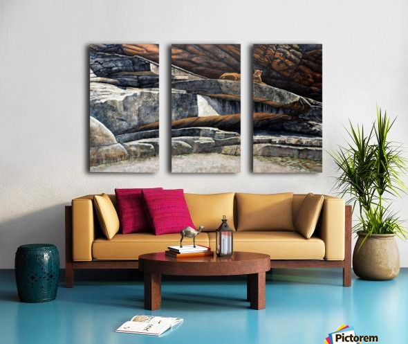 The Loner Cougar Split Canvas print