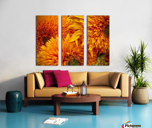 Fluffy Yellow Sunflowers Split Canvas print