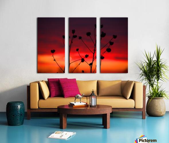 Liberty Sunset Split Canvas print
