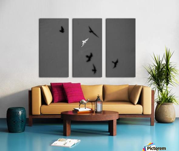 Bird and Shadows Split Canvas print