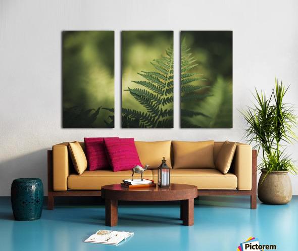 Green as the fern  Split Canvas print