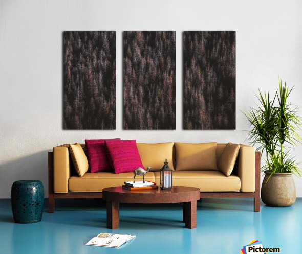 Red forest Split Canvas print
