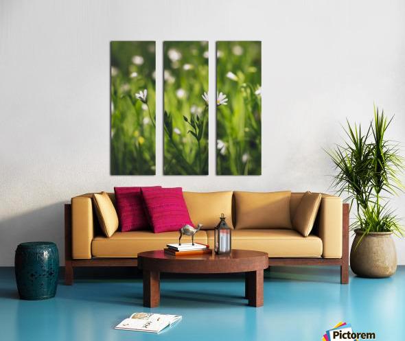 White on green Split Canvas print