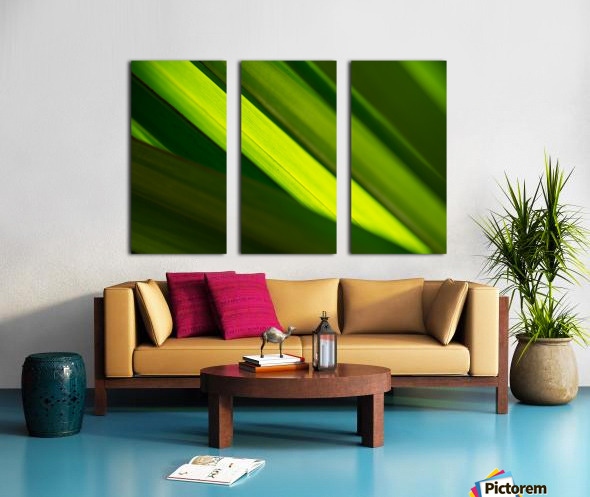 Balance Split Canvas print