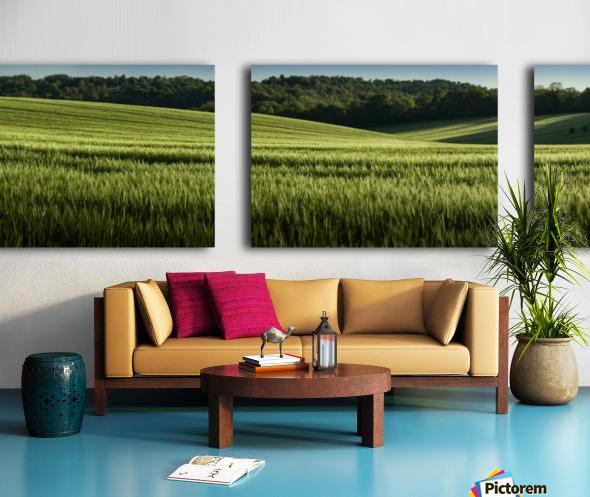 Wheat Fields Split Canvas print