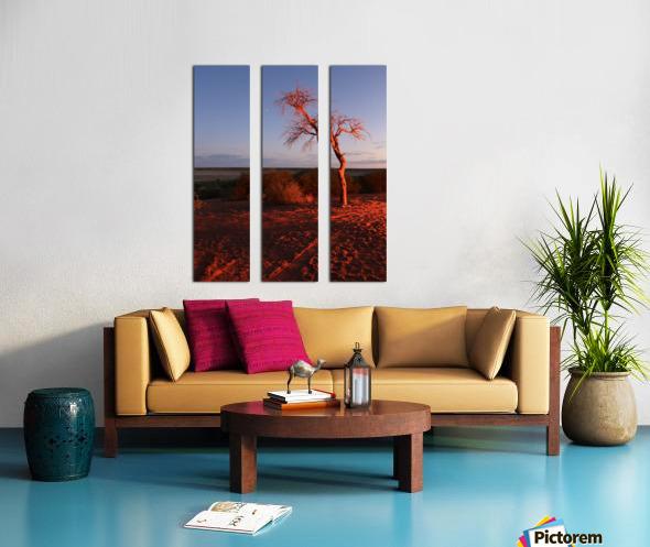 AdriaanPrinsloo 7215 Split Canvas print