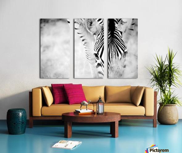 AdriaanPrinsloo 6718 Split Canvas print