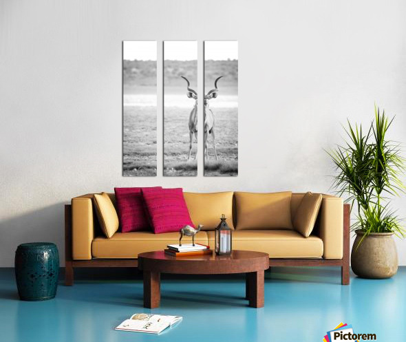 AdriaanPrinsloo 6071 Split Canvas print