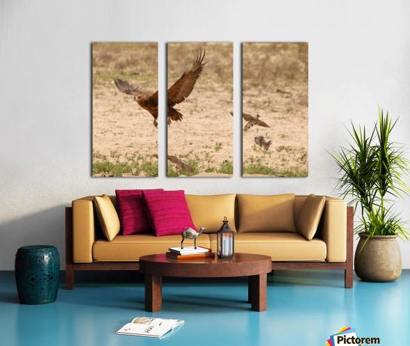 AdriaanPrinsloo 7140 2 Split Canvas print