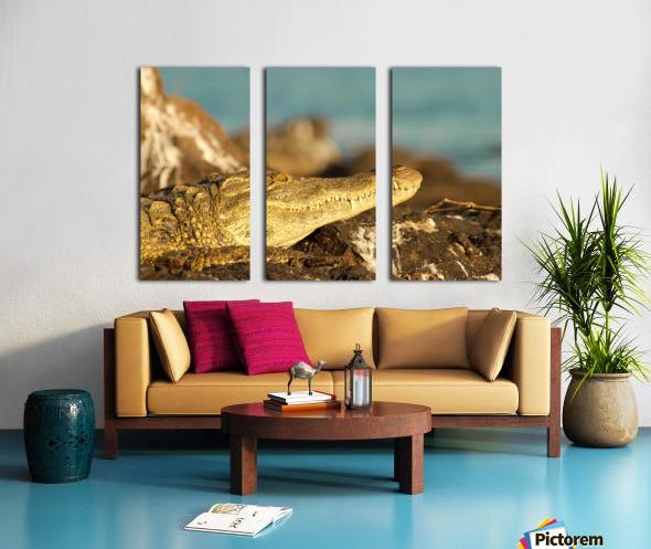 AdriaanPrinsloo 8074 Split Canvas print