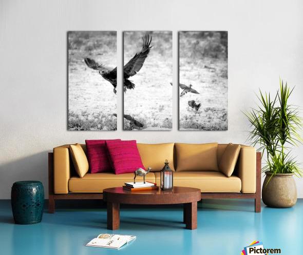 AdriaanPrinsloo 7140 Split Canvas print