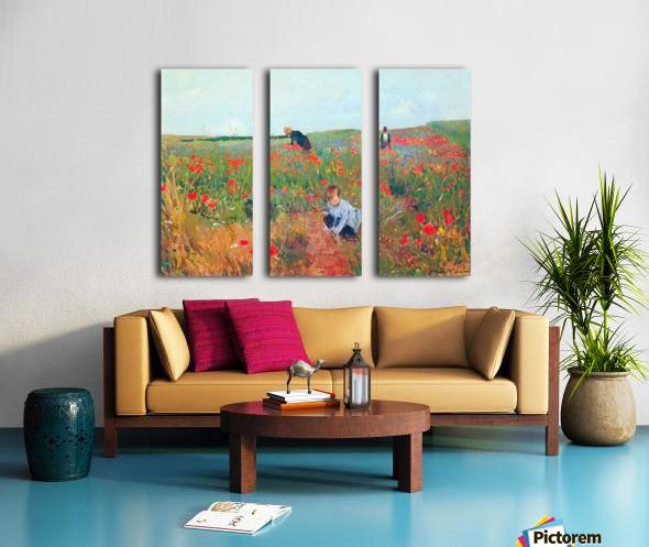 Poppy in the field by Cassatt Split Canvas print