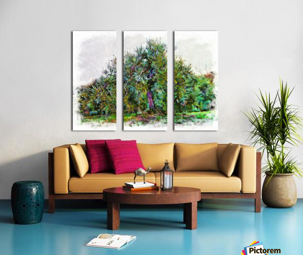 Cascading Olive Tree Split Canvas print