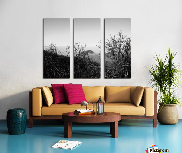 California Clouds through Mountain Brush in B&W Split Canvas print