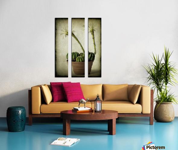 Two Split Canvas print